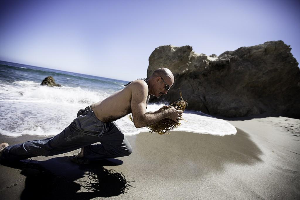 Jackson Seaweed SM